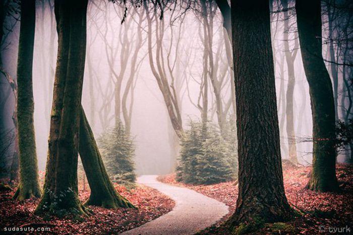 Tvurk 自然摄影欣赏