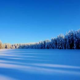 kari liimatainen 冰冷的冬季自然摄影欣赏