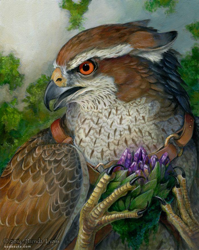 Brenda Lyons 鸟类主题传奇插画欣赏