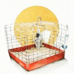 Reey Whaar 诡异的手绘水彩插画欣赏
