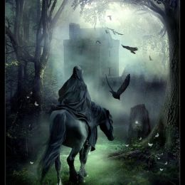 wyldraven 精灵与吸血鬼