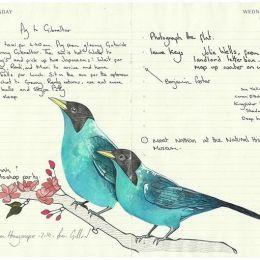 Fran Giffard 可爱的手绘小鸟