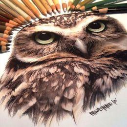 Karla Mialynne 超现实主义手绘艺术欣赏