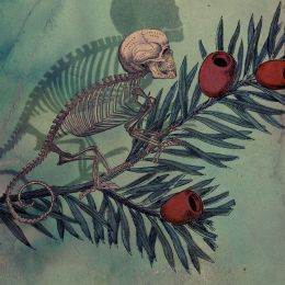 Sedki Alimam 超现实的插画作品欣赏