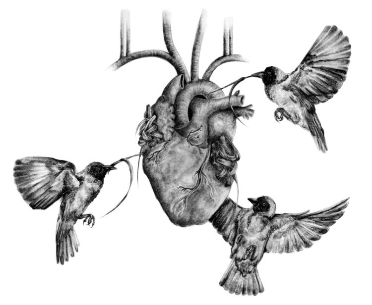 Stephanie Mah 插画作品欣赏