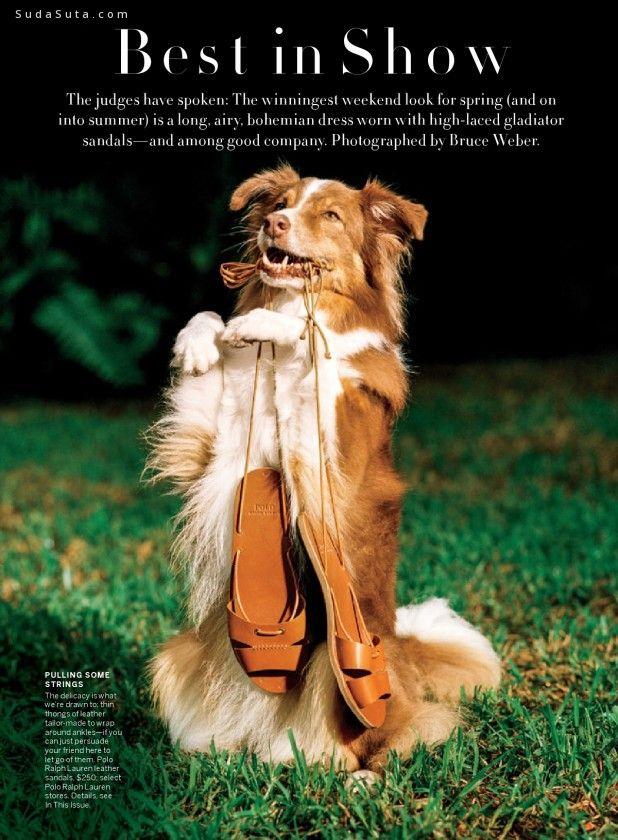 Bruce Weber 时尚摄影欣赏