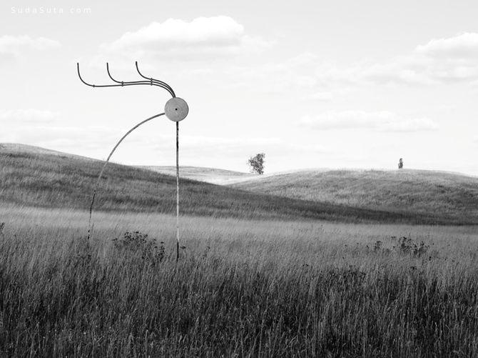 Matthias Jung 摄影作品欣赏