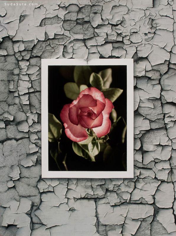 Patrick Kramer 关乎花朵 无关风雅