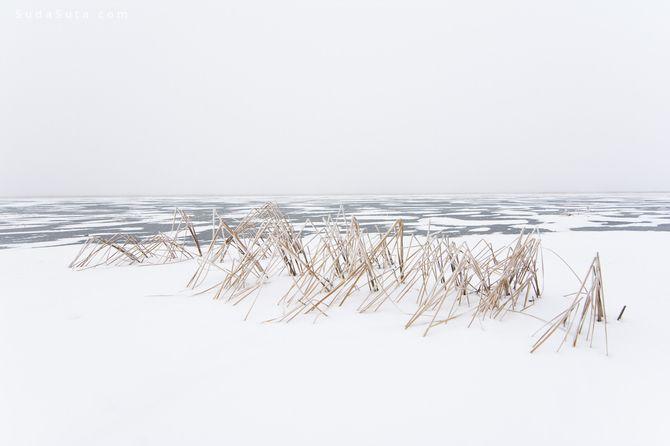 Paul Johnson 自然摄影欣赏