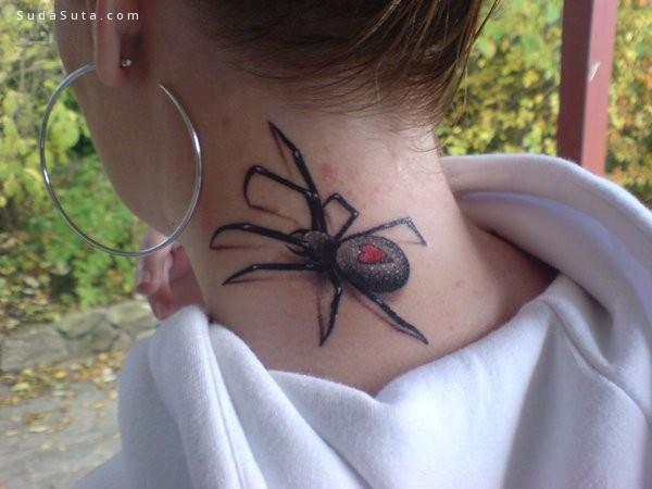 蜘蛛纹身图案设计分享