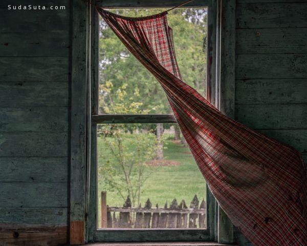 Steven Turville 摄影作品欣赏