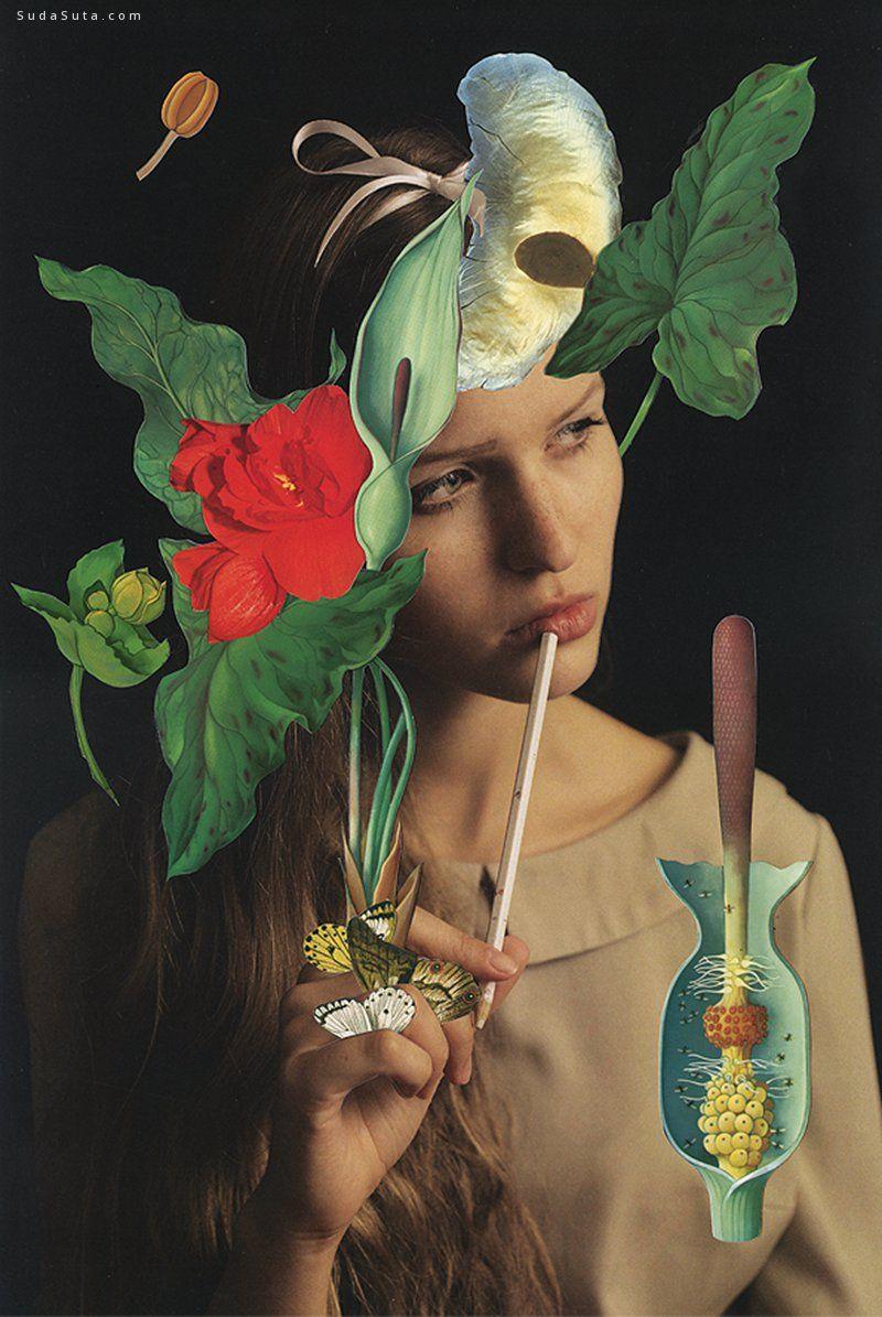 Magdalena Franczuk 拼贴艺术欣赏