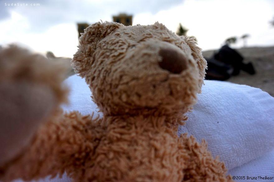 小熊Bruno 的旅行日记