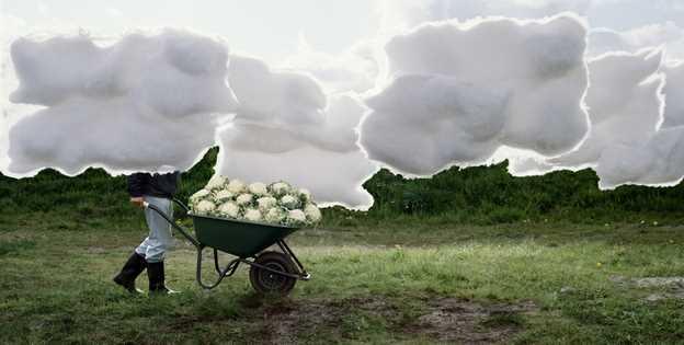 Ilse Leenders 摄影作品欣赏