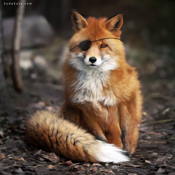 Murat Saygıner 超现实主义动物主题照片合成作品欣赏