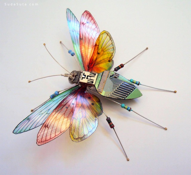 Julie Alice Chappell 昆虫之美 手工立体昆虫设计欣赏