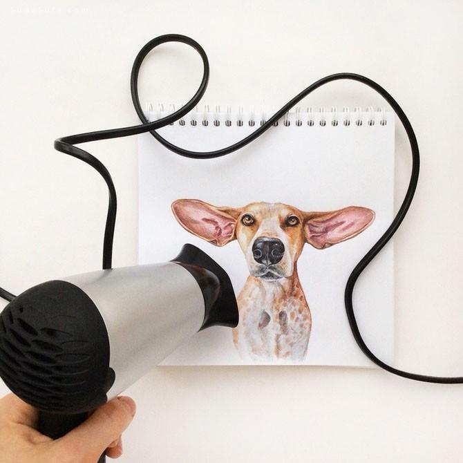 Valerie Susik 创意动物插画欣赏