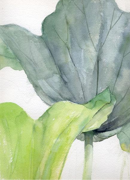 木下美香 叶子与花 自然手绘欣赏