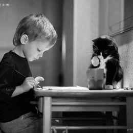猫咪爱孩子 系列摄影欣赏
