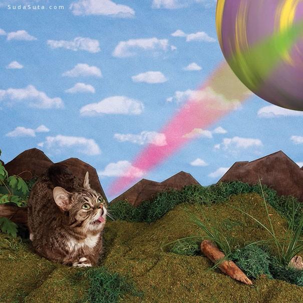 吐舌头的爱因斯坦猫