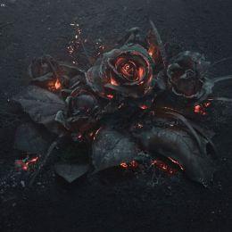 Ars Thanea 燃烧的玫瑰花束