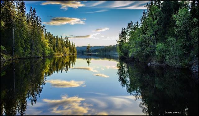 Aziz Nasuti 自然摄影欣赏