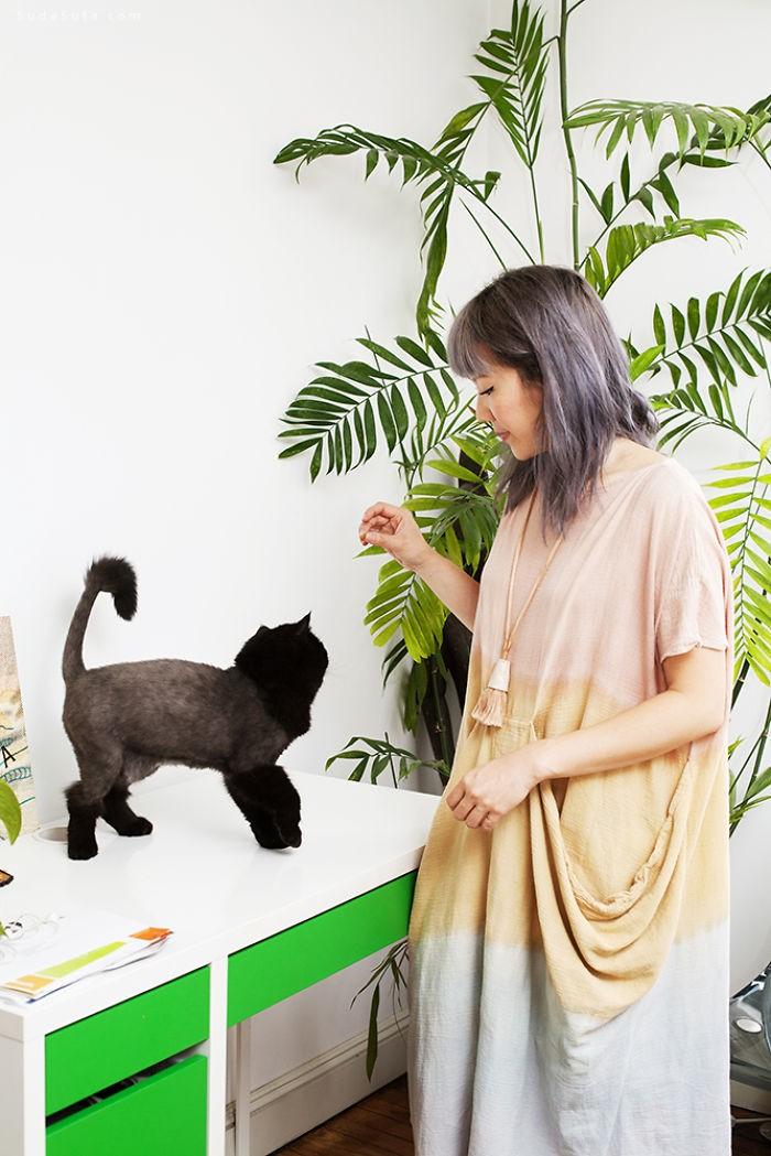 BriAnne Wills 女生和她们的猫
