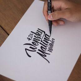 Diego Carneiro 优雅细腻的手写花体字