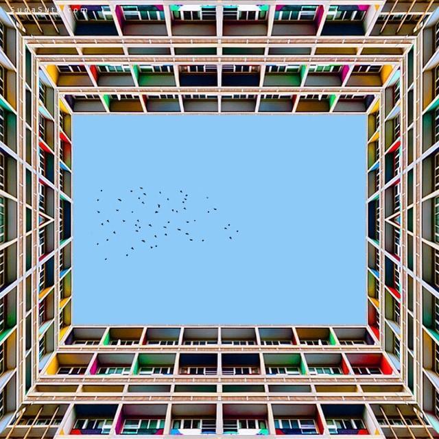 Ramin Nasibov 对称的建筑摄影欣赏