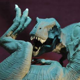 Tibor Kéri 不可思议的动物雕塑设计