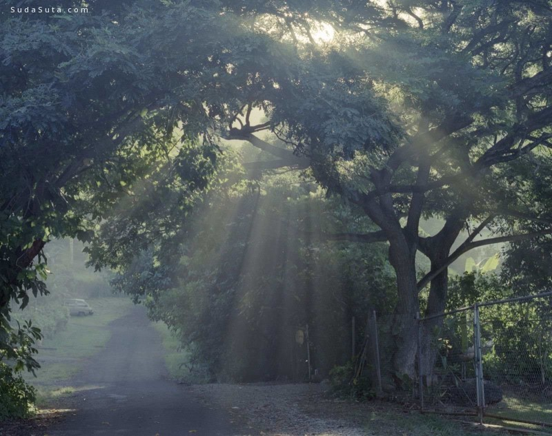 Vava Ribeiro 生活摄影欣赏
