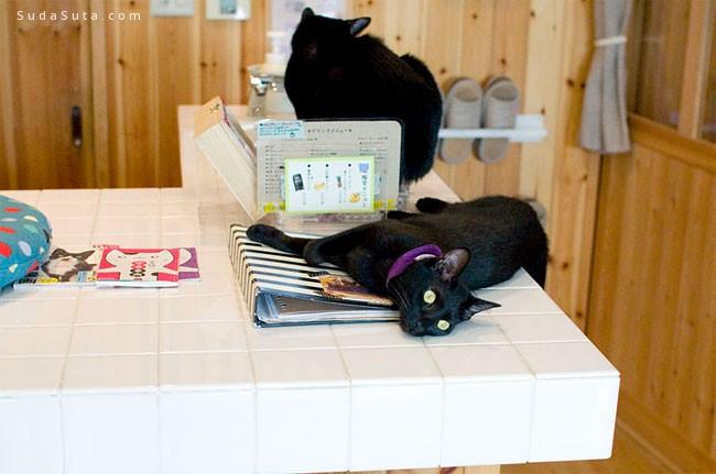 Nekobiyaka 黑猫咖啡馆