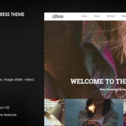 2015年最新WordPress主题设计分享