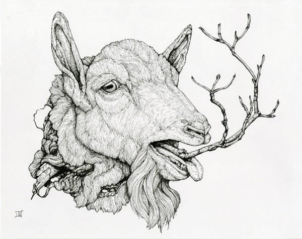 Lauren Marx 细腻唯美的手绘艺术