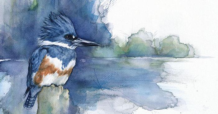 Anne Balogh 安静的描绘鸟的姿态
