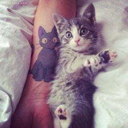 简约可爱的猫咪纹身设计欣赏