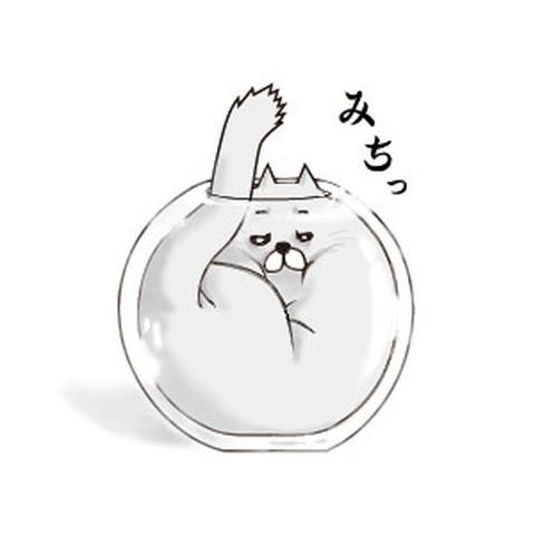各种盒子钻 可爱的动物插画欣赏