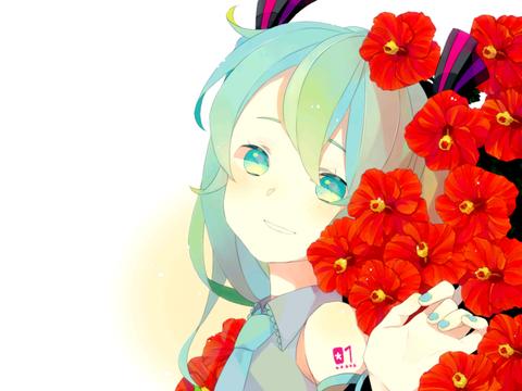 夏日的扶桑花 可爱的二次元美少女
