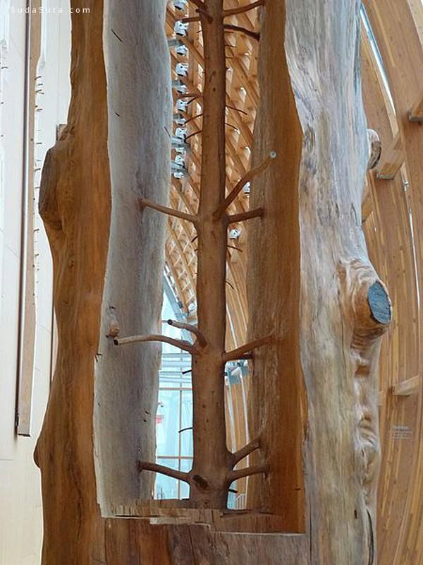 Giuseppe Penone 木头的艺术