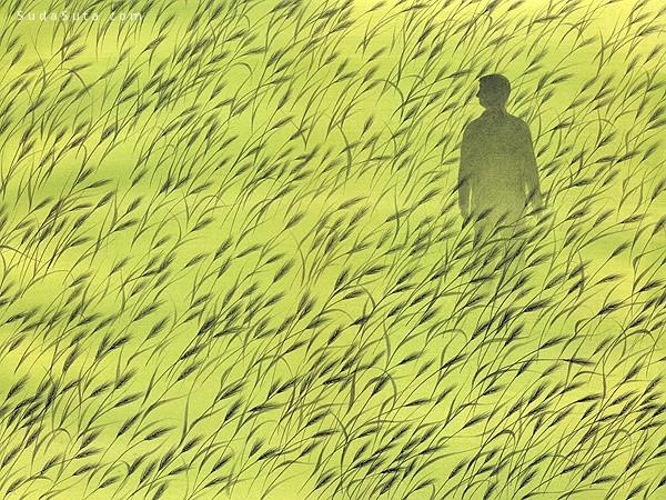 韩国艺术家 Hong Jahye 插画作品欣赏