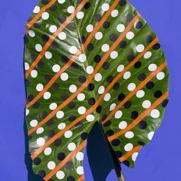 Wonderplants 叶子上的抽象绘画