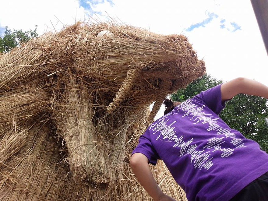 Niigata Prefecture 稻草的艺术