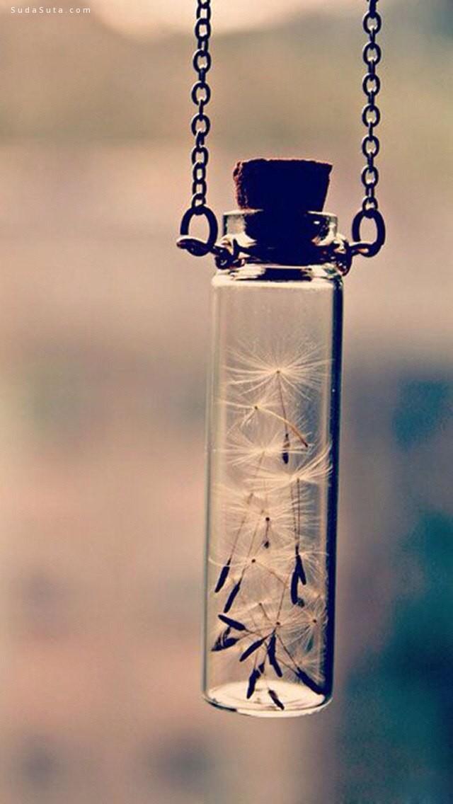 安静岁月 唯美的透明世界