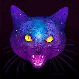 Jen Bartel 梦幻般的猫咪插画