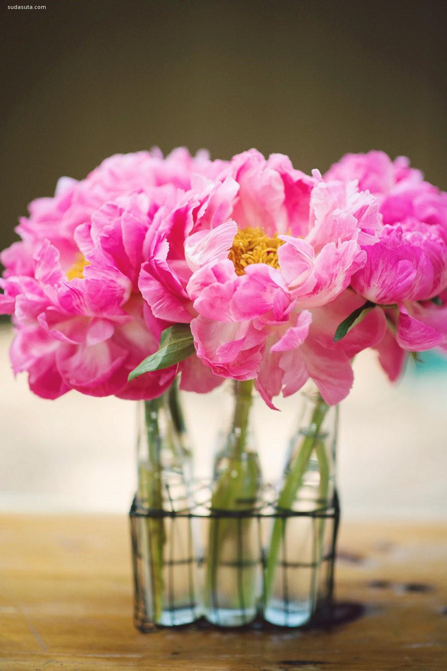 粉红色的爱恋 轻语花香