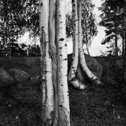 Arno Raffael Minkkinen 超现实主义黑白摄影欣赏