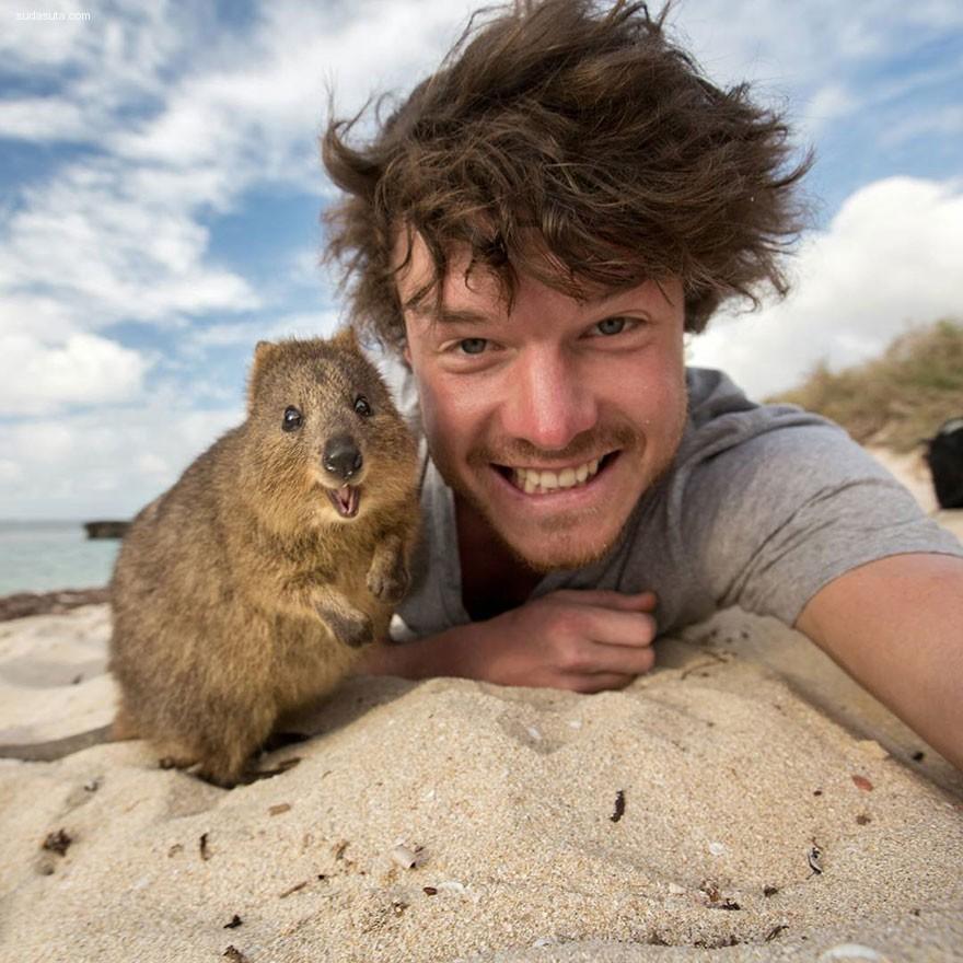 Allan Dixon 和动物的有趣自拍