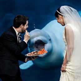 有趣幽默的婚礼摄影作品