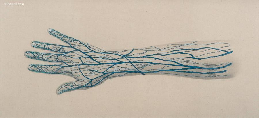 Juana Gomez 刺绣与解剖学
