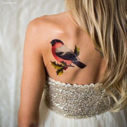 Sasha Unisex 充满色彩的纹身艺术